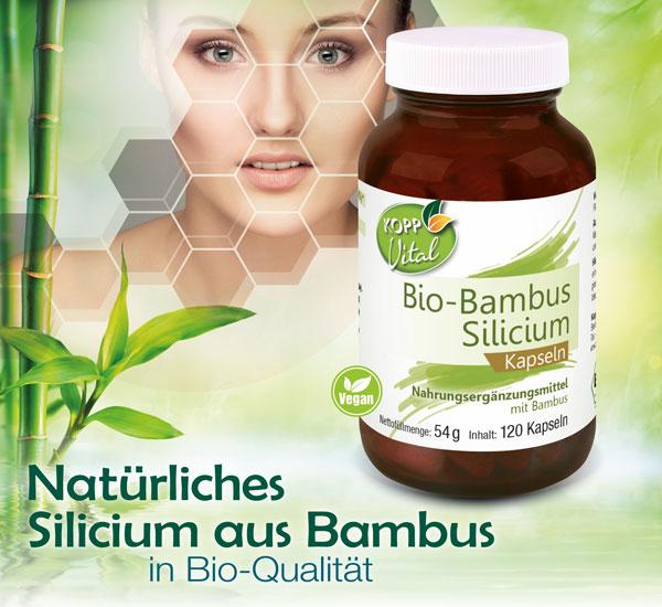 bio-bambus-silizium
