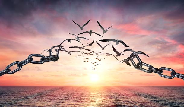 Rauhnacht-Tagesenergie-heute-elfte-Rauhnacht-Transformation-Wandlung