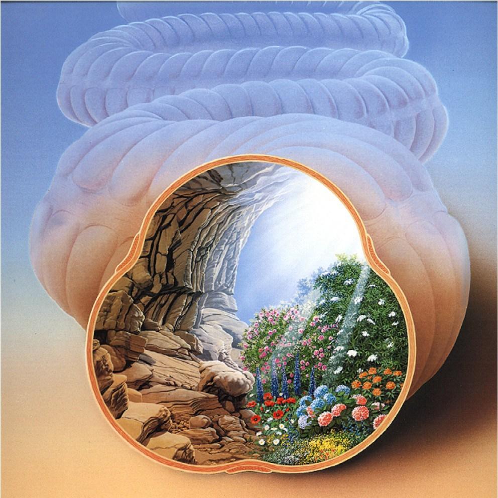 darmflora-fermentierte-lebensmittel