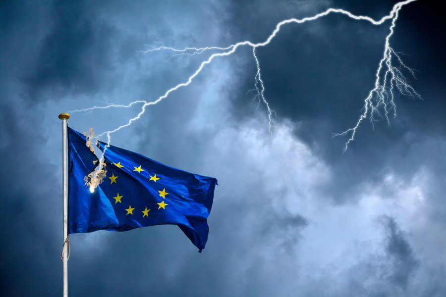 Prof. Markus C. Kerber: Der deutsche Selbstmord - EU, Euro und Corona (Video)