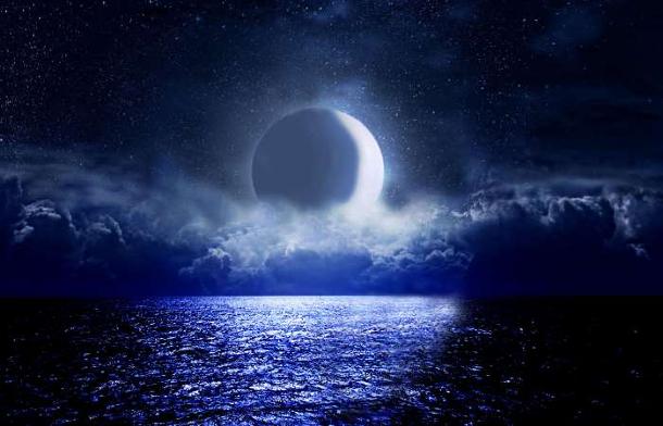 neumond-im-löwen-astrologische-prognose-haustier-horoskop