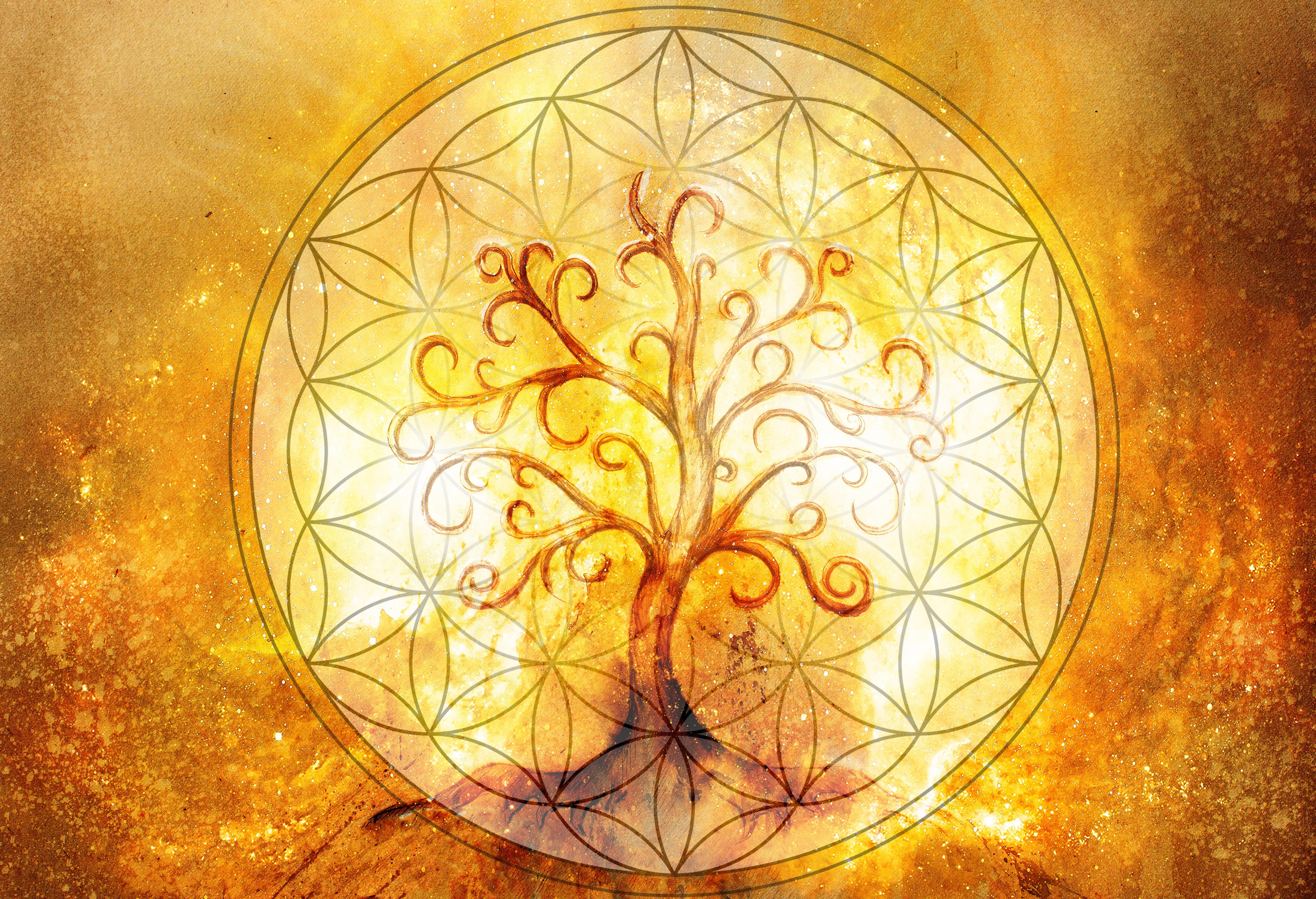 Tagesenergie heute 13. September 2021 - Blume des Lebens