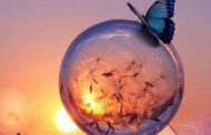 Tagesenergie heute 14. September 2021 - Visionen und Illusionen