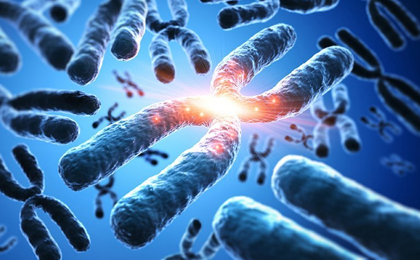Chromothripsis - Eine zelluläre Katastrophe als Krebsauslöser